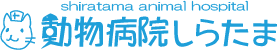 【往診専門】動物病院しらたま公式HP【東京都】